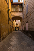 In the streets of Siena, Province of Siena, Tuscany, Italy