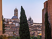 Siena Cathedral in the evening, Province of Siena, Tuscany, Italy