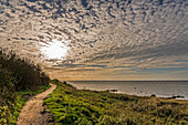 Hiking trail on the steep coast of Gold on Fehmarn, Baltic Sea, Ostholstein, Schleswig-Holstein, Germany