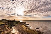 Steep coast of Gold on Fehmarn, Baltic Sea, Ostholstein, Schleswig-Holstein, Germany