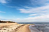 View of the steep coast of Siggen, Baltic Sea, Ostholstein, Schleswig-Holstein, Germany