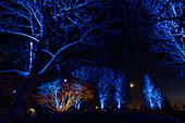 Light impression in the Kellenhusen spa gardens, Baltic Sea, Ostholstein, Schleswig-Holstein, Germany