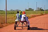 Gambia; Central River Region; Kuntaur; two women with headgear and a man on a donkey cart; on the road to Kuntaur