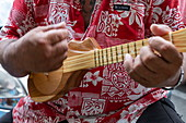 Tahitian man plays ukulele guitar at a cultural festival, Papeete, Tahiti, Windward Islands, French Polynesia, South Pacific