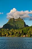 Kokospalmen auf Insel mit Mount Otemanu dahinter, Bora Bora, Leeward Islands, Französisch-Polynesien, Südpazifik