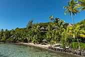 Coconut trees, beach and bungalows of the Sofitel Bora Bora Private Island Resort in the Bora Bora Lagoon, Bora Bora, Leeward Islands, French Polynesia, South Pacific