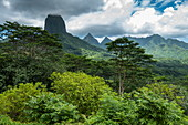 Lush vegetation and mountains seen from Belvedere Lookout, Moorea, Windward Islands, French Polynesia, South Pacific