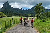 Two couples enjoy a bike ride into the interior of the island with Mount Tohivea behind, Moorea, Windward Islands, French Polynesia, South Pacific