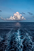 Waves behind passenger cargo ship Aranui 5 (Aranui Cruises) with a majestic cloud on the horizon, at sea between the Marquesas Islands and the Tuamotu Islands, French Polynesia, South Pacific