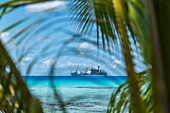 Palm fronds with passenger cargo ship Aranui 5 (Aranui Cruises) moored in the lagoon in the distance, Avatoru Island, Rangiroa Atoll, Tuamotu Islands, French Polynesia, South Pacific