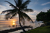 Silhouette of coconut palm outside the restaurant of the Tahiti Ia Ora Beach Resort (managed by Sofitel) at sunset, near Papeete, Tahiti, Windward Islands, French Polynesia, South Pacific