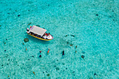 Motu taxi boat excursion for snorkeling with reef sharks and stingrays in the lagoon of Bora Bora, Bora Bora, Leeward Islands, French Polynesia, South Pacific