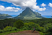 Aerial view of woman with bicycle at Belvedere Lookout looking towards Opunohu Bay (left) and Cook's Bay (right), Moorea, Windward Islands, French Polynesia, South Pacific