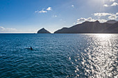 Aerial view silhouette of outrigger canoe with coastline in background, Taiohae, Nuku Hiva, Marquesas Islands, French Polynesia, South Pacific