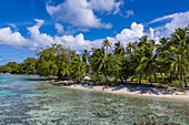 Aerial view of people relaxing on the coconut palm fringed beach, Avatoru Island, Rangiroa Atoll, Tuamotu Islands, French Polynesia, South Pacific