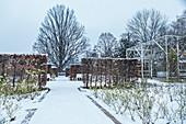 Coburg rose garden in winter, Coburg, Upper Franconia, Bavaria, Germany