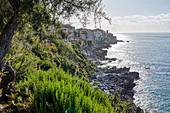 Stone coast, Cefalu, Sicily, Italy