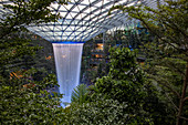 """The Rain Vortex"" (largest indoor waterfall in the world) in the ""The Jewel Changi"" shopping center at Singapore Changi Airport (SIN), Singapore, Singapore, Asia"