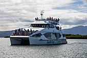 Catamaran Tiger V (South Sea Cruises) returns to Port Denarau Marina, Port Denarau, near Nadi, Viti Levu, Fiji Islands, South Pacific