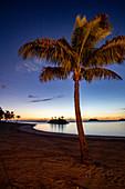 Coconut palm, beach and small barrier island at Six Senses Fiji Resort at dusk, Malolo Island, Mamanuca Group, Fiji Islands, South Pacific