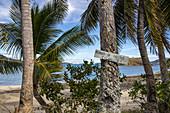 Watch out, coconuts! A warning sign on a coconut palm warns of falling coconuts, Nabukeru, Yasawa Island, Yasawa Group, Fiji Islands, South Pacific