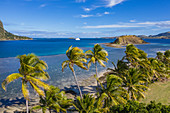 Aerial view of coconut trees and cruise ship MV Reef Endeavor (Captain Cook Cruises Fiji) in the distance, Nabukeru, Yasawa Island, Yasawa Group, Fiji Islands, South Pacific