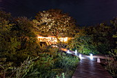 Wooden walkway leads to the main building in the luxury tented resort Magashi Camp (Wilderness Safaris) at night, Akagera National Park, Eastern Province, Rwanda, Africa
