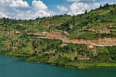 Coastal road along Lake Kivu, near Gitesi, Western Province, Rwanda, Africa