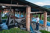 Man explains the function of machines on a coffee plantation, Kinunu, Western Province, Rwanda, Africa