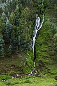 Waterfall and trees on the hillside, near Musanze, Northern Province, Rwanda, Africa