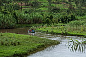 Kanu Ausflug auf Fluss durch üppig grüne Landschaft, nahe Ruhengeri, Northern Province, Ruanda, Afrika