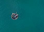Luftaufnahme von Fischer in traditionellem runden Boot in türkisfarbenen Wasser, Ong Lang, Insel Phu Quoc, Kien Giang, Vietnam, Asien