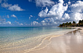 Early morning shot of a quiet beach with no people, a calm ripple and blue sky dotted with white clouds.\nShot in Antigua