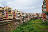 Houses on the River Onyar, Girona, Catalonia, Spain, Europe