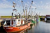 Fishing boats in the harbor, fishing trawler, Dornumersiel Tief, Dornumersiel, East Frisia, Lower Saxony, Germany