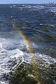 Rainbow in the spray, North Sea, ship, ferry, Norderney, East Frisia, Lower Saxony, Germany