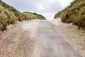 Sand blows on the beach path, dunes, wind, windy, Norderney, East Frisia, Lower Saxony, Germany
