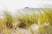 Ferry behind the dune, sand oat (Ammorphila), dune grass, North Sea, Norderney, East Frisia, Germany