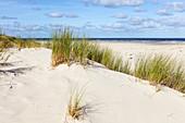 Dunes of Spiekeroog, sand, grass, beach, Spiekeroog, East Frisia, Lower Saxony, Germany