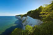 Jasmund National Park, chalk cliffs, chalk coast, Rügen, Baltic Sea, Mecklenburg-Western Pomerania, Germany
