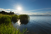 View over the Achterwasser, Lieper Winkel, Usedom, Baltic Sea, Mecklenburg-Western Pomerania, Germany