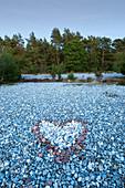 Flint fields in the Schmalen Heide, Ruegen, Baltic Sea, Mecklenburg-Western Pomerania, Germany