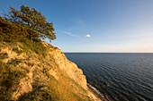 Zickersches Höft in the Mönchgut nature reserve, Ruegen, Baltic Sea, Mecklenburg-Western Pomerania, Germany
