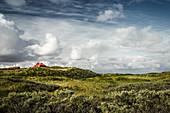 Dünenlandschaft mit Haus, Spiekeroog, Ostfriesland, Niedersachsen, Deutschland, Europa