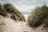 Path between sand dunes and dune grass on the North Sea under cloudy skies, Spiekeroog, East Frisia, Lower Saxony, Germany, Europe