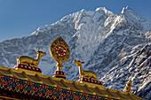 The Buddhist wheel of teaching in Tengboche Monastery in Solo Khumbu, Nepal, Himalayas, Asia.