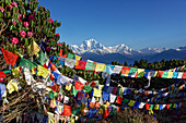 Prayer flags and the Dhaulagiri photographed on Poon Hill, Nepal, Himalayas, Asia.