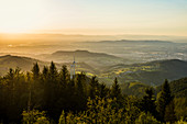 View from Schauinsland into the Rhine Valley, sunset, Black Forest, Baden-Wuerttemberg, Germany