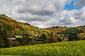 Landschaft mit Feldern und Herbstwald, bei Emmendingen, Schwarzwald, Baden-Württemberg, Deutschland
