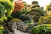 Japanese Garden, Seepark, Freiburg im Breisgau, Black Forest, Baden-Württemberg, Germany